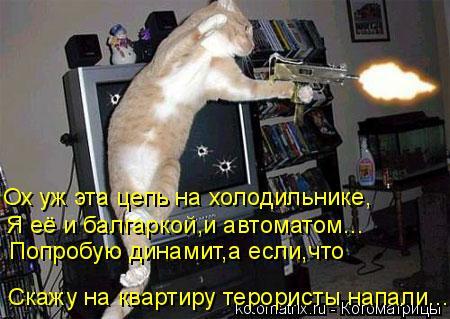 Котоматрица: Ох уж эта цепь на холодильнике, Я её и балгаркой,и автоматом... Скажу на квартиру терористы напали... Попробую динамит,а если,что