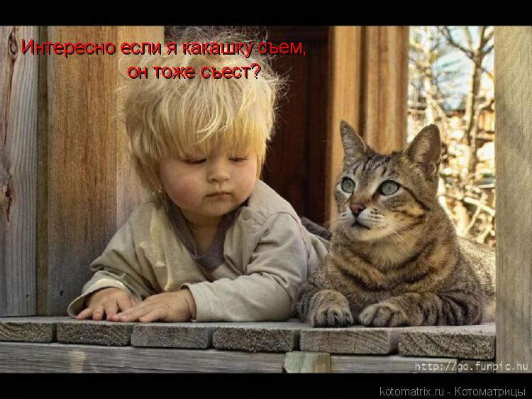 Котоматрица: Интересно если я какашку съем, он тоже съест?