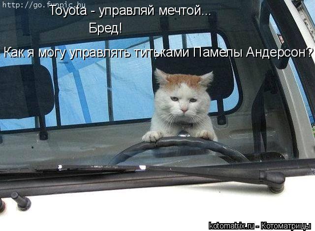 Котоматрица: Toyota - управляй мечтой... Бред! Как я могу управлять титьками Памелы Андерсон?!