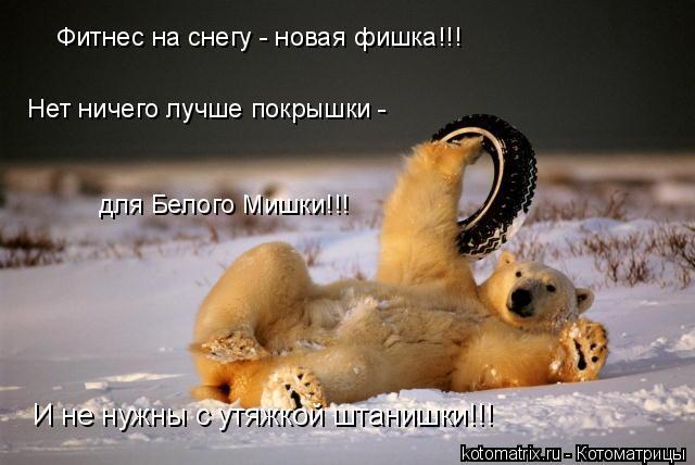 Котоматрица: Фитнес на снегу - новая фишка!!! Нет ничего лучше покрышки - для Белого Мишки!!! И не нужны с утяжкой штанишки!!!