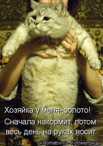 Котоматрица: Хозяйка у меня- золото! Сначала накормит, потом весь день на руках носит.