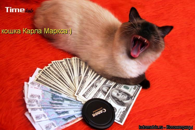 Котоматрица: кошка Карла Маркса:)