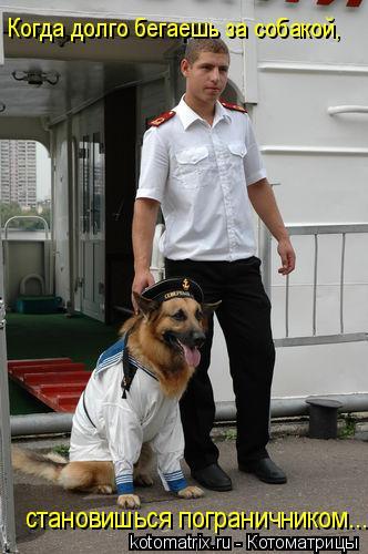 Котоматрица: Когда долго бегаешь за собакой, становишься пограничником...