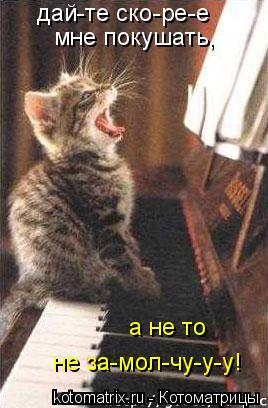 Котоматрица: дай-те ско-ре-е мне покушать, а не то  не за-мол-чу-у-у!