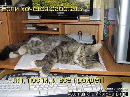 Котоматрица: Если хочется работать -   - ляг, поспи, и всё пройдёт!