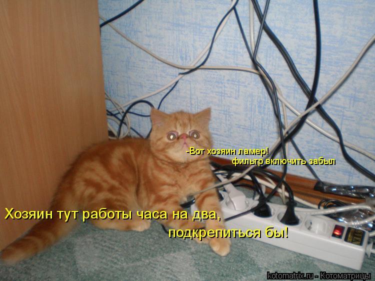 Котоматрица: -Вот хозяин ламер! фильтр включить забыл Хозяин тут работы часа на два, подкрепиться бы!