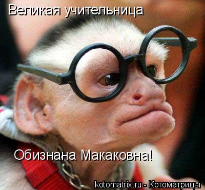 Котоматрица: Великая учительница Обизнана Макаковна!