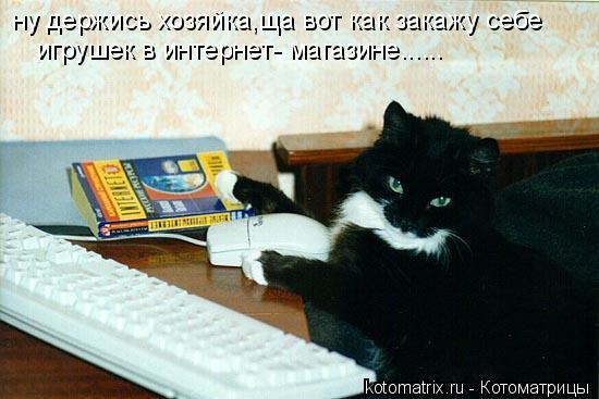Котоматрица: ну держись хозяйка,ща вот как закажу себе игрушек в интернет- магазине......