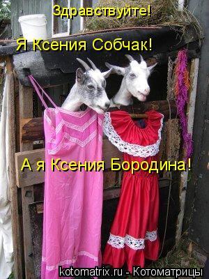 Котоматрица: А я Ксения Бородина! Я Ксения Собчак! Здравствуйте!