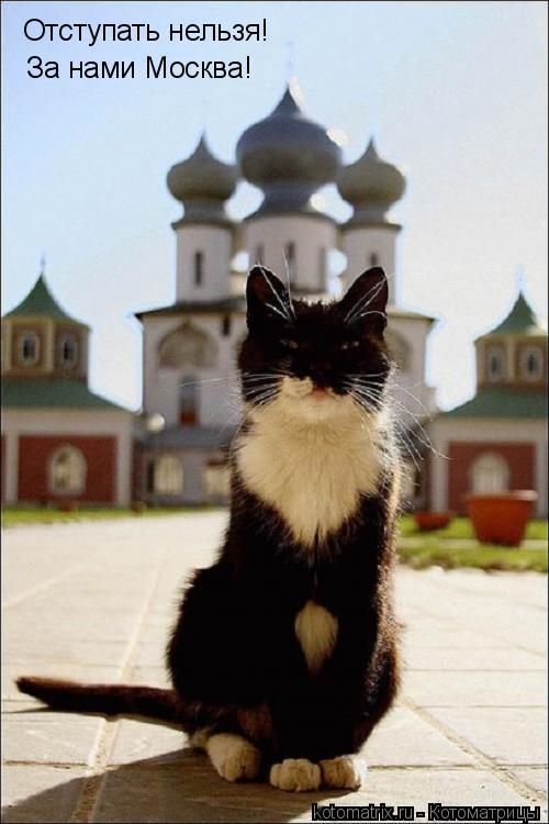 Котоматрица: Отступать нельзя! За нами Москва!