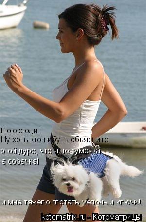 Котоматрица: Лююююди! Ну хоть кто нибуть объясните  этой дуре, что я не сумочка и мне тяжело глотать мелочь и ключи! а собачка!