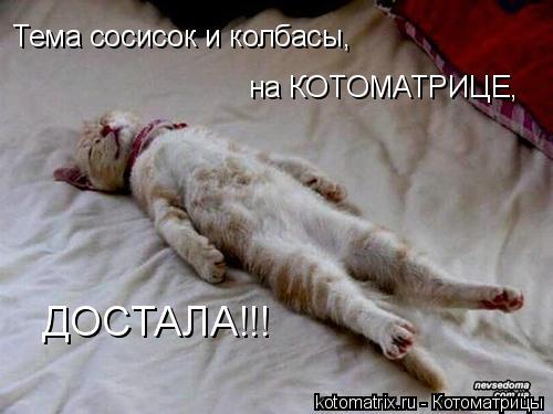 Котоматрица: Тема сосисок и колбасы, на КОТОМАТРИЦЕ, ДОСТАЛА!!!