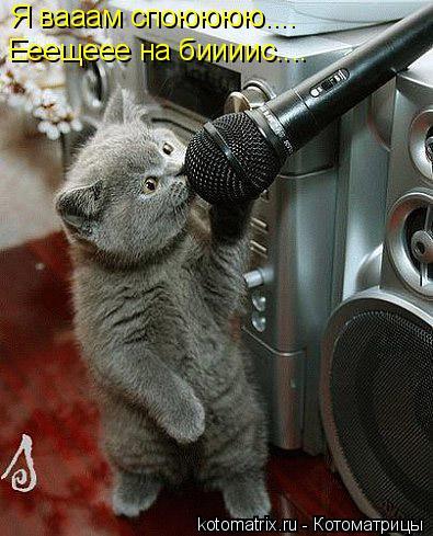 Котоматрица: Я вааам споюююю.... Ееещеее на биииис....