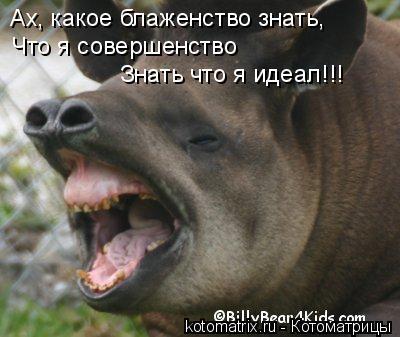 http://kotomatrix.ru/images/lolz/2008/07/09/6C.jpg