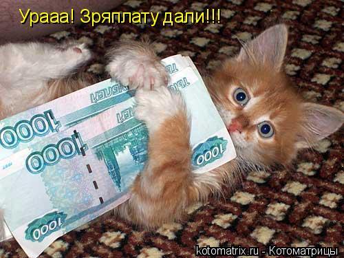 Котоматрица: Урааа! Зряплату дали!!!