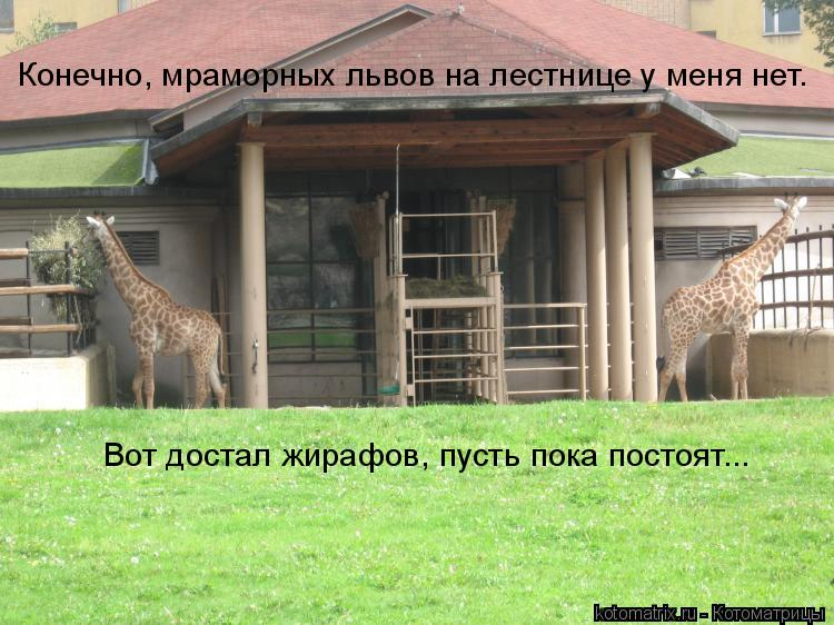 Котоматрица: Конечно, мраморных львов на лестнице у меня нет. Вот достал жирафов, пусть пока постоят...