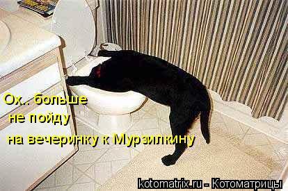 Котоматрица: Ох.. больше не пойду на вечеринку к Мурзилкину