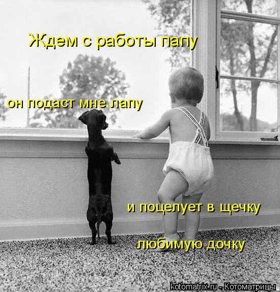 http://kotomatrix.ru/images/lolz/2008/07/11/VX.jpg