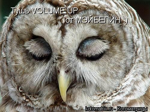 Котоматрица: Тушь VOLUME UP от МЭЙБЕЛИН :)