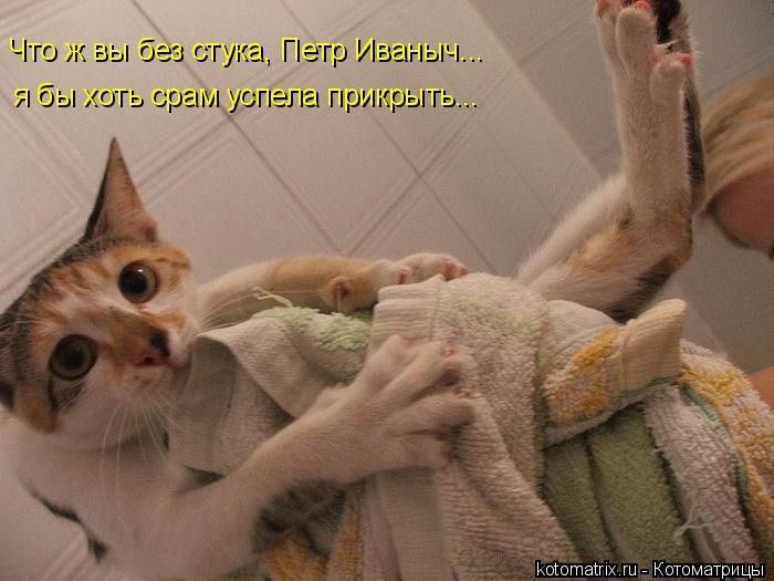 Котоматрица: Что ж вы без стука, Петр Иваныч... я бы хоть срам успела прикрыть...