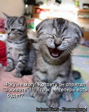 """Котоматрица: -Ржу не могу! Котлету он спрятал  """"В животе"""" !!! Кто ж её теперь есть будет??!!!  будет?"""