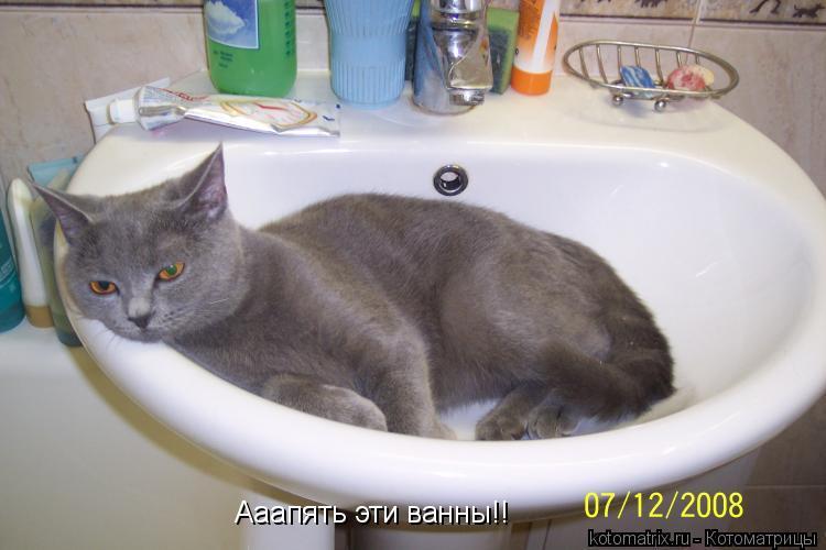 Котоматрица: Ааапять эти ванны!!