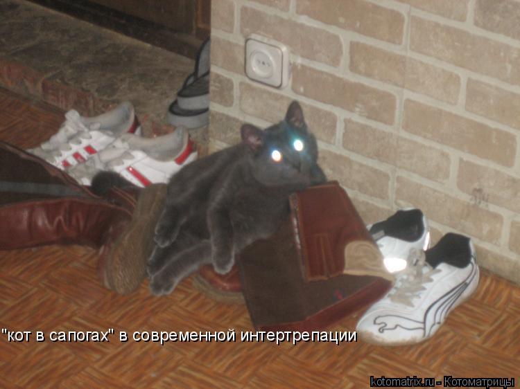 """Котоматрица: """"кот в сапогах"""" в современной интертрепации"""