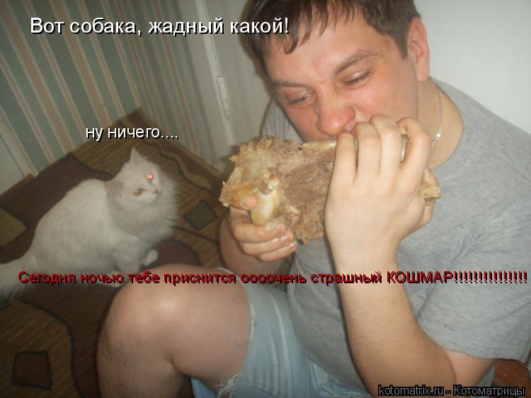 Котоматрица: Вот собака, жадный какой! ну ничего.... Сегодня ночью тебе приснится оооочень страшный КОШМАР!!!!!!!!!!!!!!!