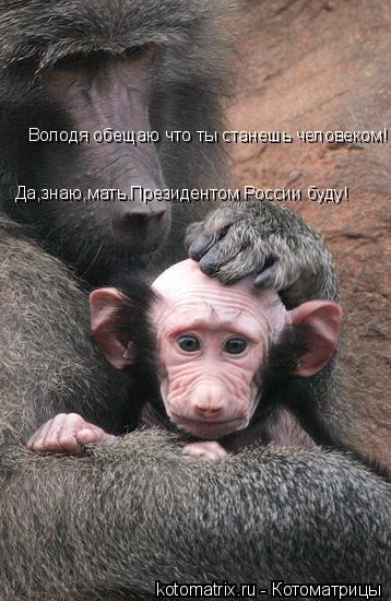 Котоматрица: Володя обещаю что ты станешь человеком! Да,знаю,мать.Президентом России буду!
