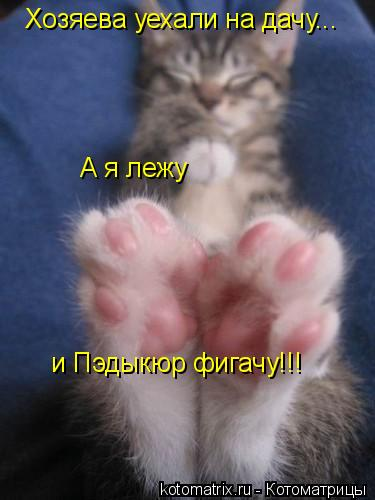 Котоматрица: Хозяева уехали на дачу... А я лежу и Пэдыкюр фигачу!!!