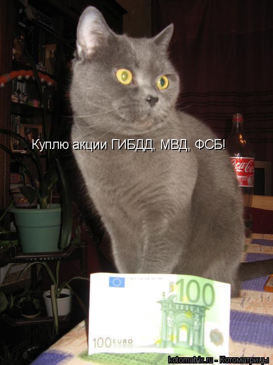 Котоматрица: Куплю акции ГИБДД, МВД, ФСБ!
