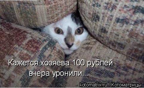 Котоматрица: Кажется,хозяева 100 рублей вчера уронили...