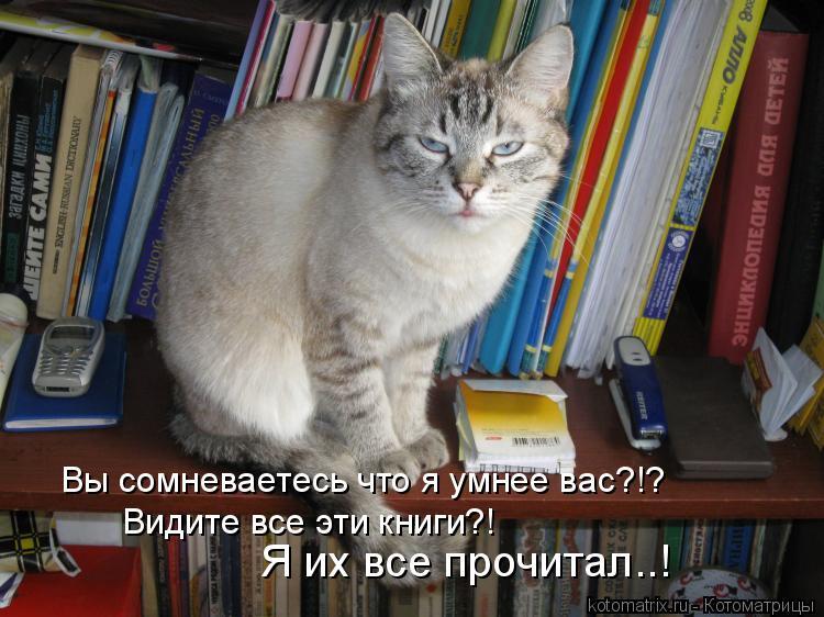 Котоматрица: Вы сомневаетесь что я умнее вас?!? Видите все эти книги?! Я их все прочитал..!