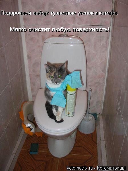 Котоматрица: Подарочный набор: туалетные утенок и катенок Мягко очистит любую поверхность!