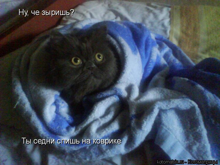 Котоматрица: Ну, че зыришь? Ты седни спишь на коврике