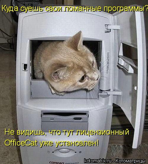 Котоматрица: Куда суешь свои ломанные программы? Не видишь, что тут лицензионный OfficeCat уже установлен!