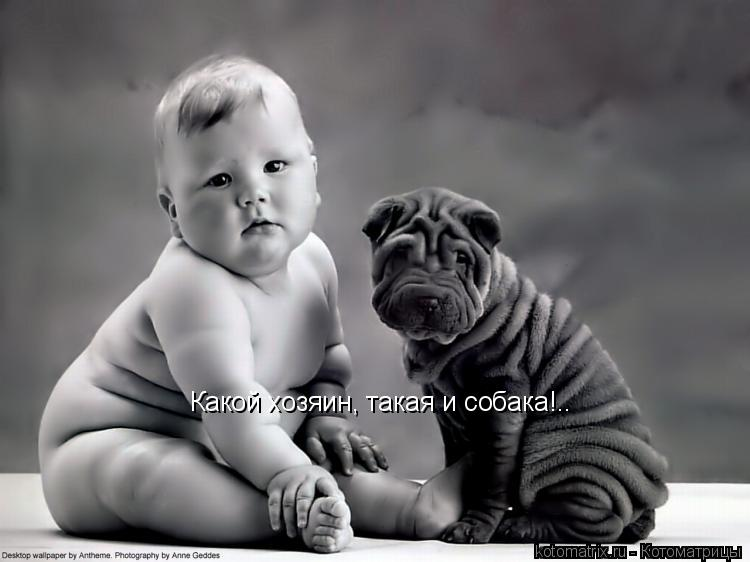 Котоматрица: Какой хозяин, такая и собака!..