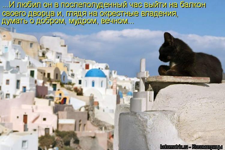 Котоматрица: ...И любил он в послеполуденный час выйти на балкон своего дворца и, глядя на окрестные владения, думать о добром, мудром, вечном...
