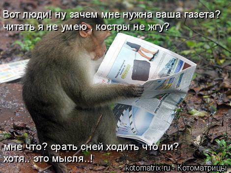 Котоматрица: Вот люди! ну зачем мне нужна ваша газета? читать я не умею , костры не жгу? мне что? срать сней ходить что ли? хотя.. это мысля..!