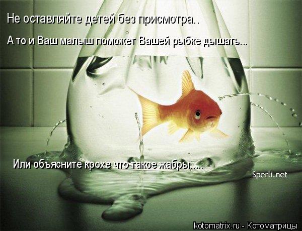 Котоматрица: Не оставляйте детей без присмотра.. А то и Ваш малыш поможет Вашей рыбке дышать... Или объясните крохе что такое жабры.....