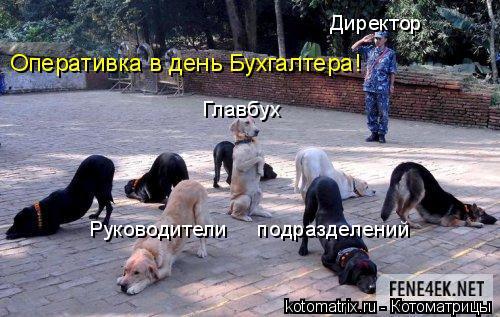 Котоматрица: Директор Главбух Руководители     подразделений Оперативка в день Бухгалтера!