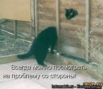 Котоматрица: Всегда можно посмотреть  на проблему со стороны!