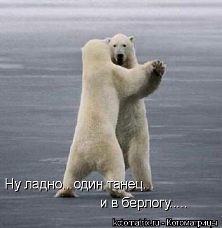 Котоматрица: Ну ладно...один танец... и в берлогу.....