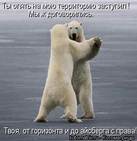 Котоматрица: Ты опять на мою территорию заступил ! Мы ж договорились. Твоя, от горизонта и до айсберга с права!