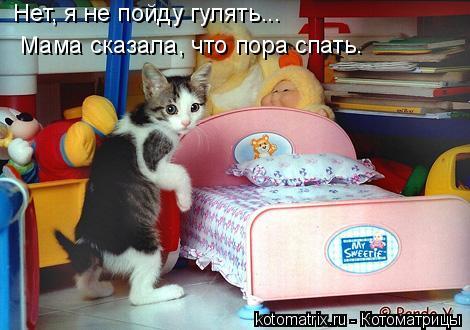 Котоматрица: Нет, я не пойду гулять... Мама сказала, что пора спать.