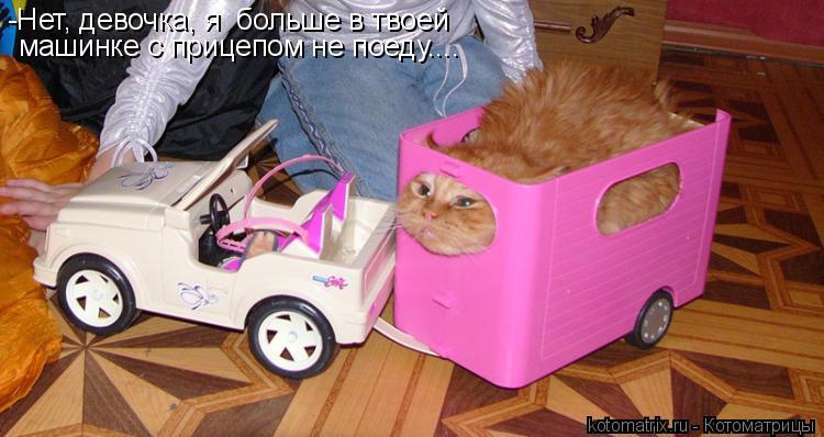 Котоматрица: -Нет, девочка, я  больше в твоей  машинке с прицепом не поеду....