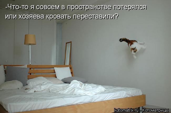 Котоматрица: -Что-то я совсем в пространстве потерялся или хозяева кровать переставили?