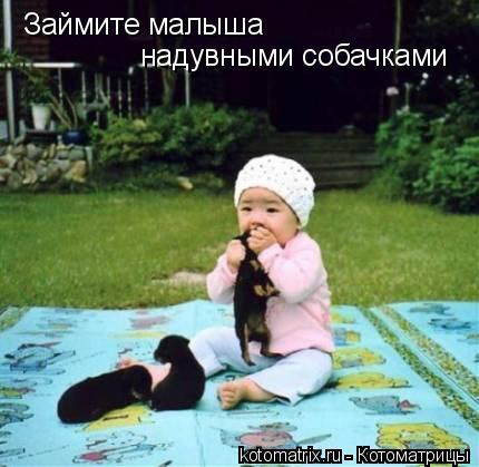 Котоматрица: Займите малыша надувными собачками