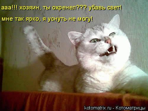 Котоматрица: ааа!!! хозяин, ты охренел??? убавь свет! мне так ярко, я уснуть не могу!