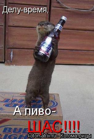 Котоматрица: Делу-время, А пиво- ЩАС!!!!